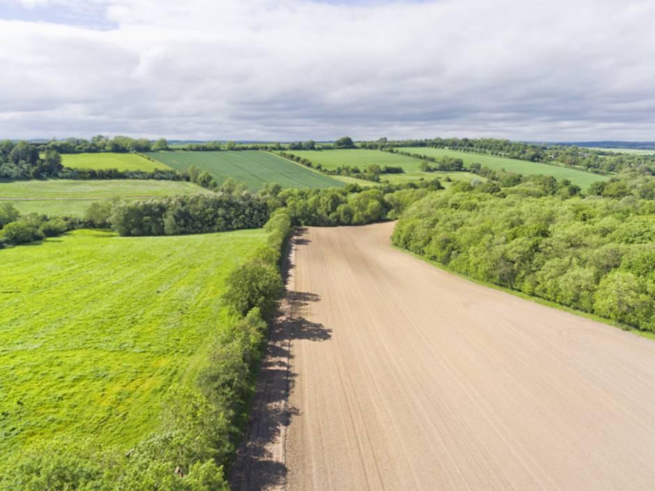 Landwirtschaft kaufen, Forstwirtschaft kaufen, Felder, Foto: Yola Watt/iStock