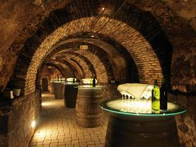 Weingut kaufen, Weinkeller, Weinprobe, Foto: iStock/ jarnogz