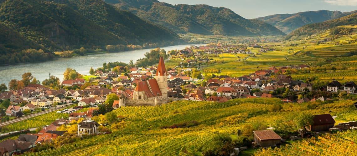 Weingut kaufen, Weinberg kaufen, selten aber lukrativ, Foto: iStock/Stefan Rotter