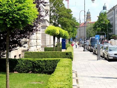München, Wohnung suchen München, Maxvorstadt, Brienner Straße, Foto: immowelt.de/Kari Hennig
