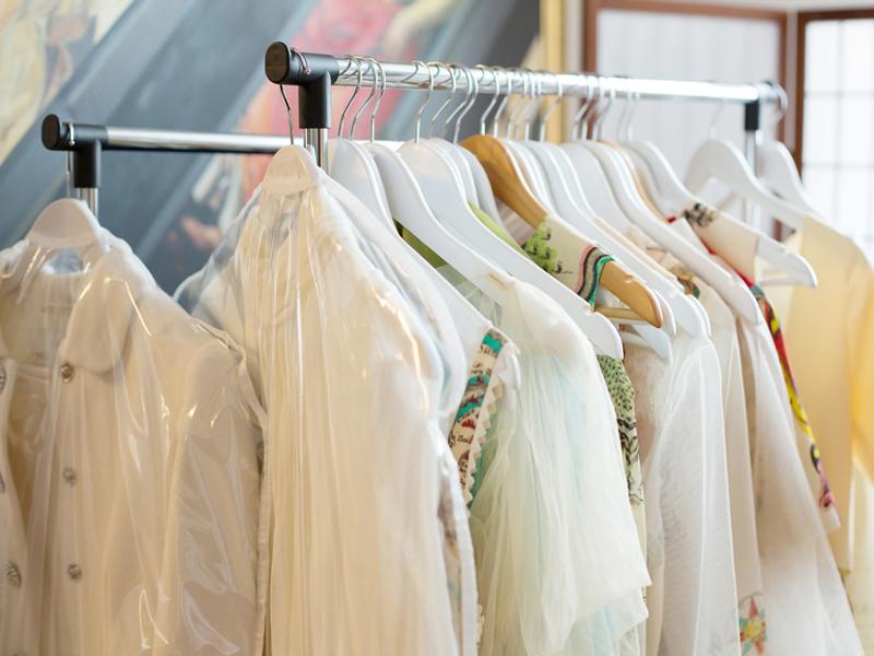 Woher Kommen Kleidermotten kleidermotten bekämpfen die besten tipps und hausmittel